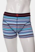 Striped short boxer